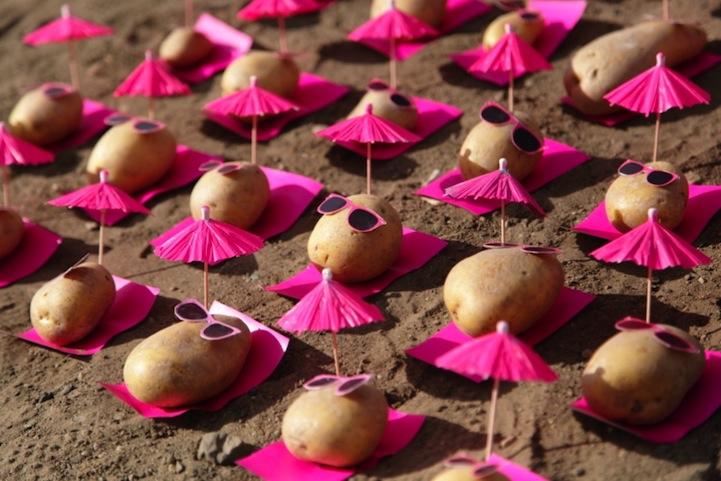 peter pink food art