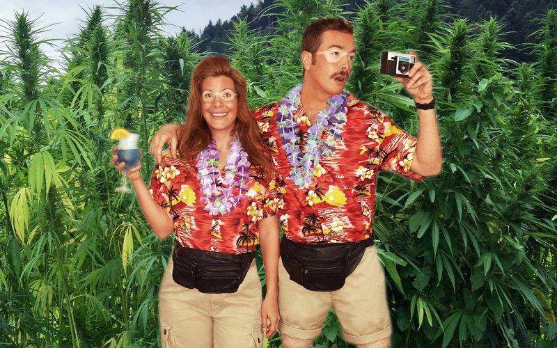 cannabis camp