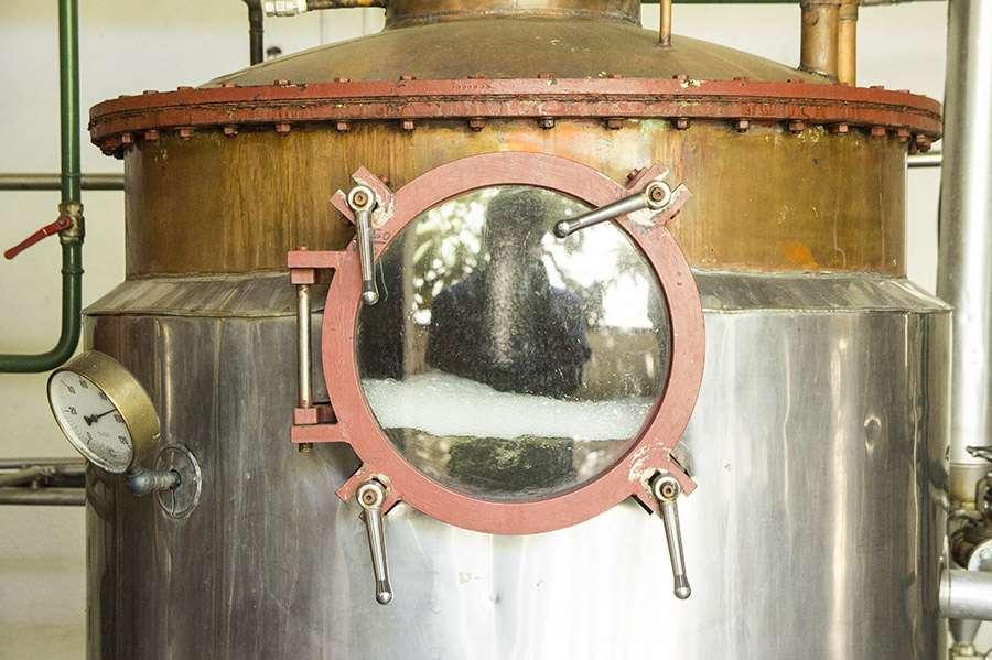 distillerie pisco austral