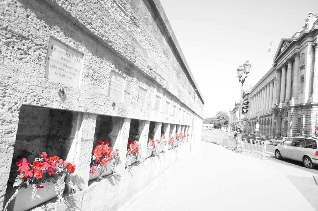 """Photo 1 - Thème """"La nature au coeur de la ville"""""""
