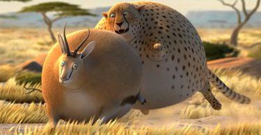 rollin safari humour