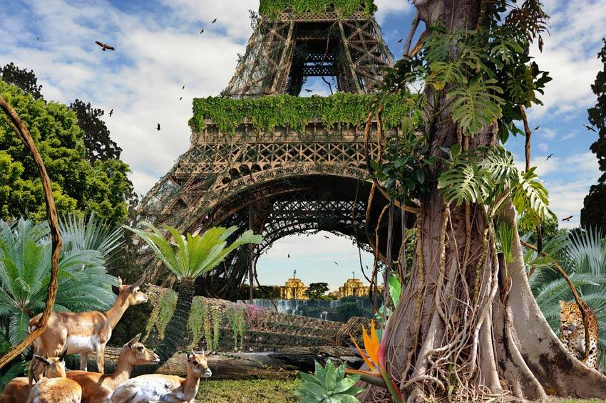 Paris Tour Eiffel version jungle