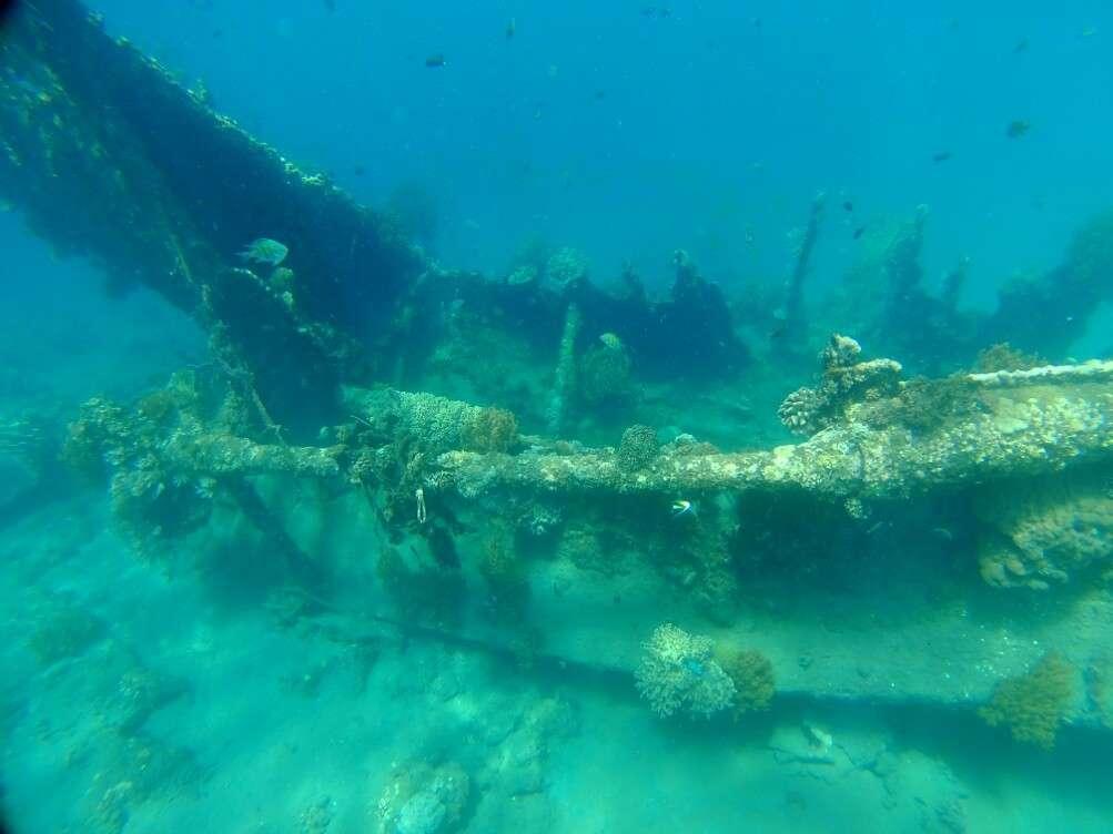 fonds marin bali