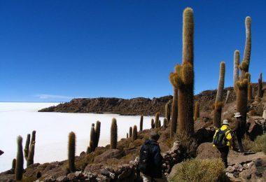 randonnée bolivie