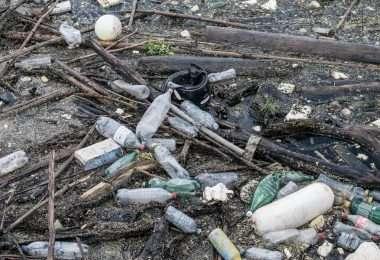 noplasticchallenge