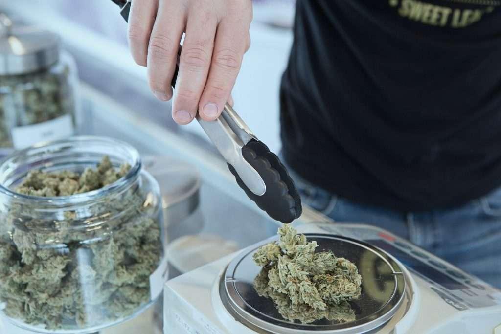 cannabis-solution-crise
