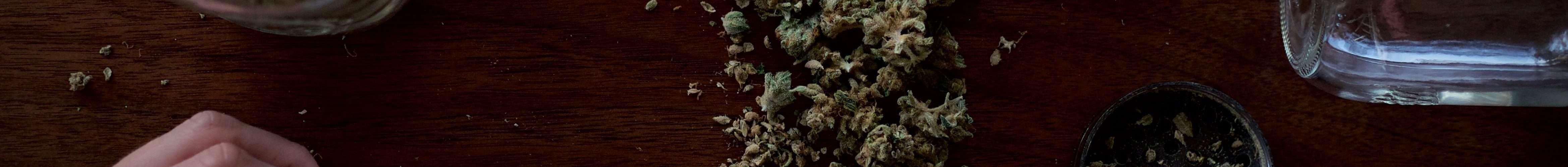 business du cannabis
